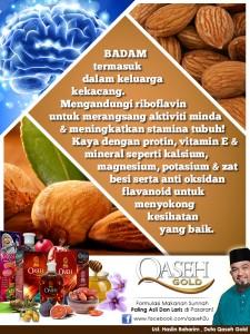 badam-info