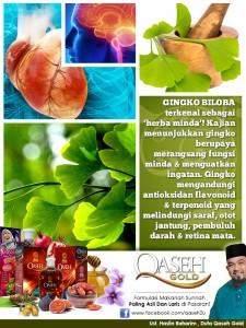 ginkgo-info